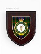 SA Legion Shield with tartan background